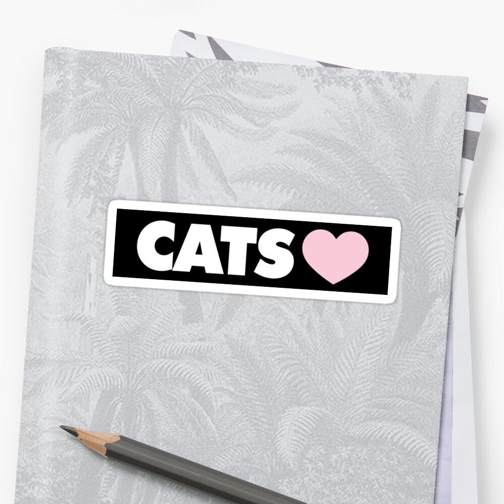 CAT by wildserenity