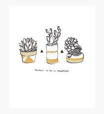 Rude Succulents Photographic Print