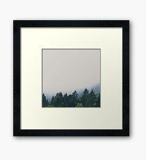 muir woods | mill valley, california Framed Print