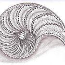 Tangled Nautilus by Christianne Gerstner