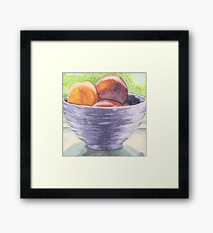 Stoned Fruit in Watercolor Framed Print