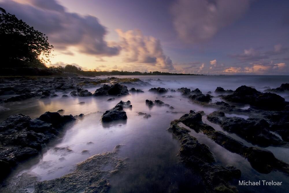 Highway to Hana - Maui by Michael Treloar