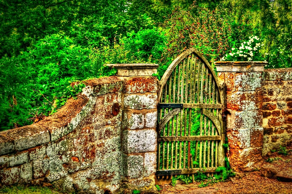The Old Garden Gate (HDR) by Vicki Field