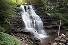 Summer's Perfection At Erie Falls by Gene Walls
