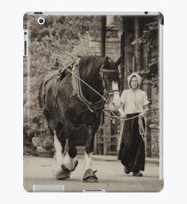 Shire Walk  iPad Case/Skin