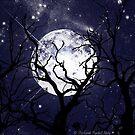 Hallowed Moon by Stephanie Rachel Seely
