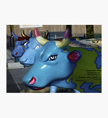 Three Cows on Parade, Ebrington Sq, Derry Photographic Print