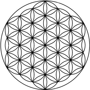 Flower Of Life by Americ