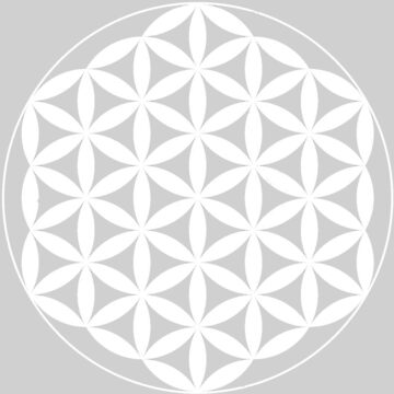 Flower Of Life - White by Americ