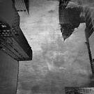 Skyline haze by Stefanie Le Pape