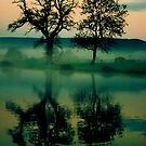 Twilight Lake by Ed Stone