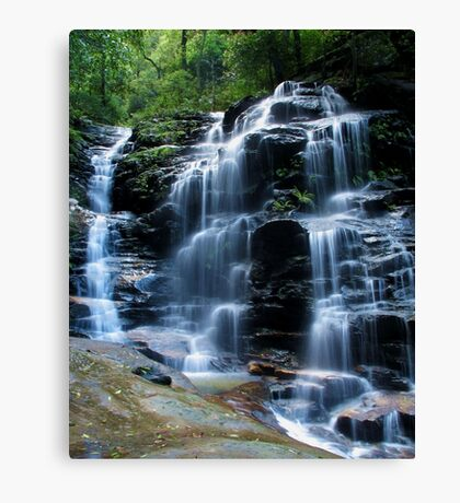 Sylvia Falls, Blue Mountains Canvas Print