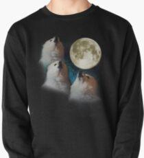 Gabe the Dog - Three Gabe Moon Pullover