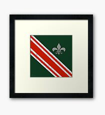 Madison Scouts 2015 Framed Print