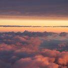 Morning Flight by Louise Linossi Telfer