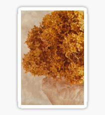 Dried Hydrangea Flower Arrangement  Sticker