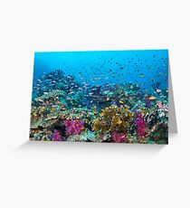 Fantasea Reef Greeting Card