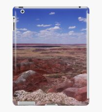 The Painted Desert, Nature's Masterpiece iPad Case/Skin
