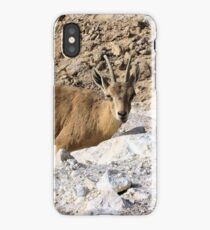 Mountain little goat iPhone Case/Skin