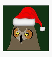 Funny Annoyed Owl Wearing a Christmas Hat Photographic Print