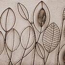Wire Leaves in Sepia by Martie Venter