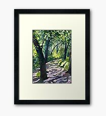 Path into the trees - Descanso Gardens - Original impressionist watercolour landscape by Francesca Whetnall Framed Print