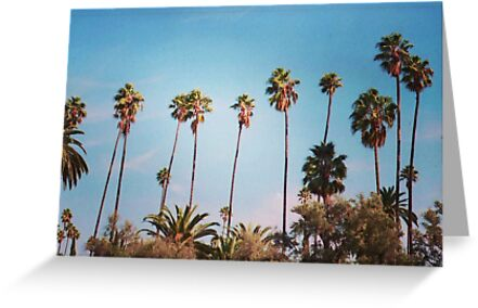palm trees again by Santamariaa