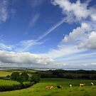 Rolling Hills of County Down by Smaxi