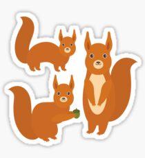 Fluffy Squirrels Sticker