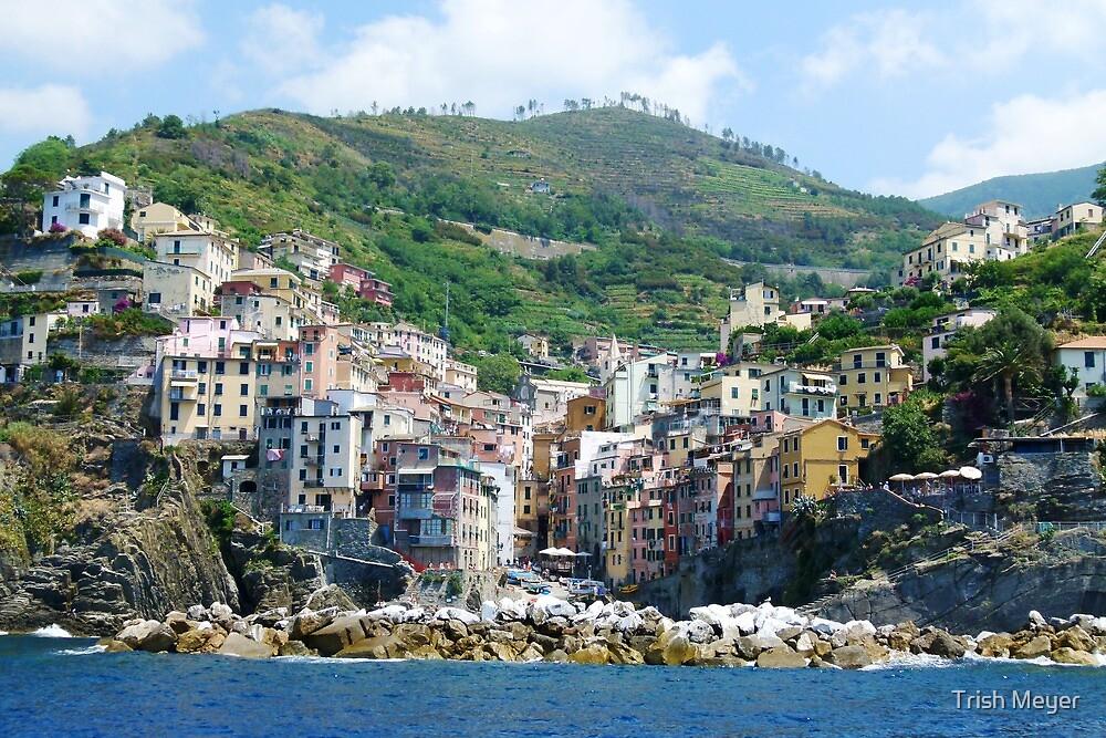 Cinque Terre : Riomaggiore by Trish Meyer