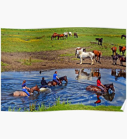 Horse riding in a river, near Ogmore Castle, Wales Poster