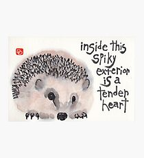 Tender Heart Hedgehog Photographic Print