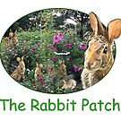 The Rabbit Patch by little1sandra