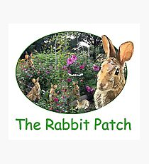 The Rabbit Patch Photographic Print