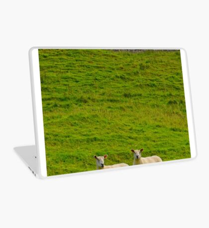 2 welsh Mountain Sheep at Dryslwyn Castle, Wales Laptop Skin