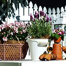 Flower Pot Man & Some Potted Colour by Gabrielle  Lees