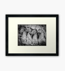 Four horsed chariot which carries Titus Framed Print