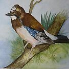 MY GARDEN JAY - sold by Marilyn Grimble
