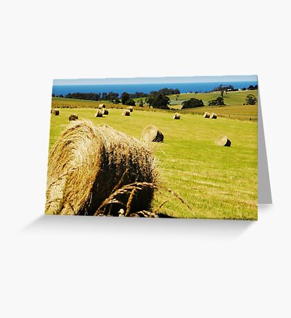 Making Hay while the Sun shines Greeting Card