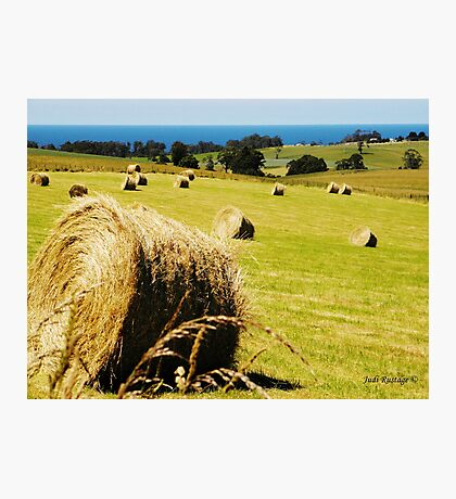 Making Hay while the Sun shines Photographic Print