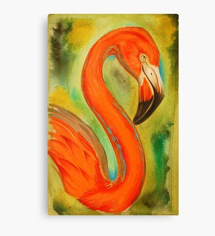 pink flamingo, large version Canvas Print