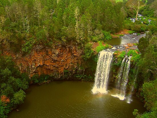 The Beauty Of Dangar Falls by Michael Matthews
