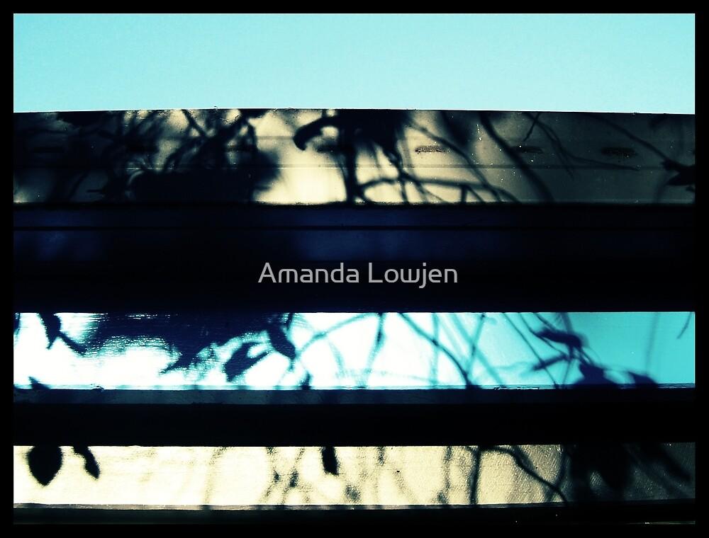 soyoureyescantsee by Amanda Lowjen