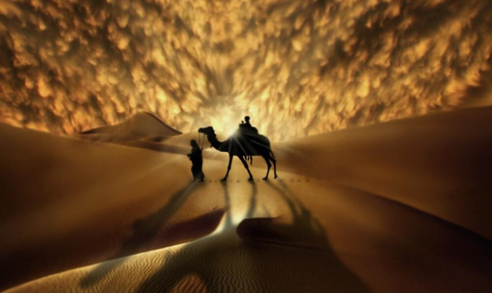 Splendid Isolation by Cliff Vestergaard