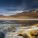 bolivia  Laguna Q'ara  by Ty Cooper