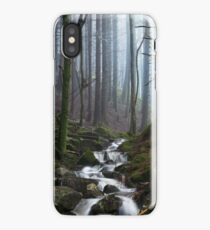 Misty Forest Stream iPhone Case/Skin