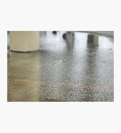 Wet and Wild  Photographic Print