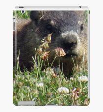 Groundhog, Montreal iPad Case/Skin
