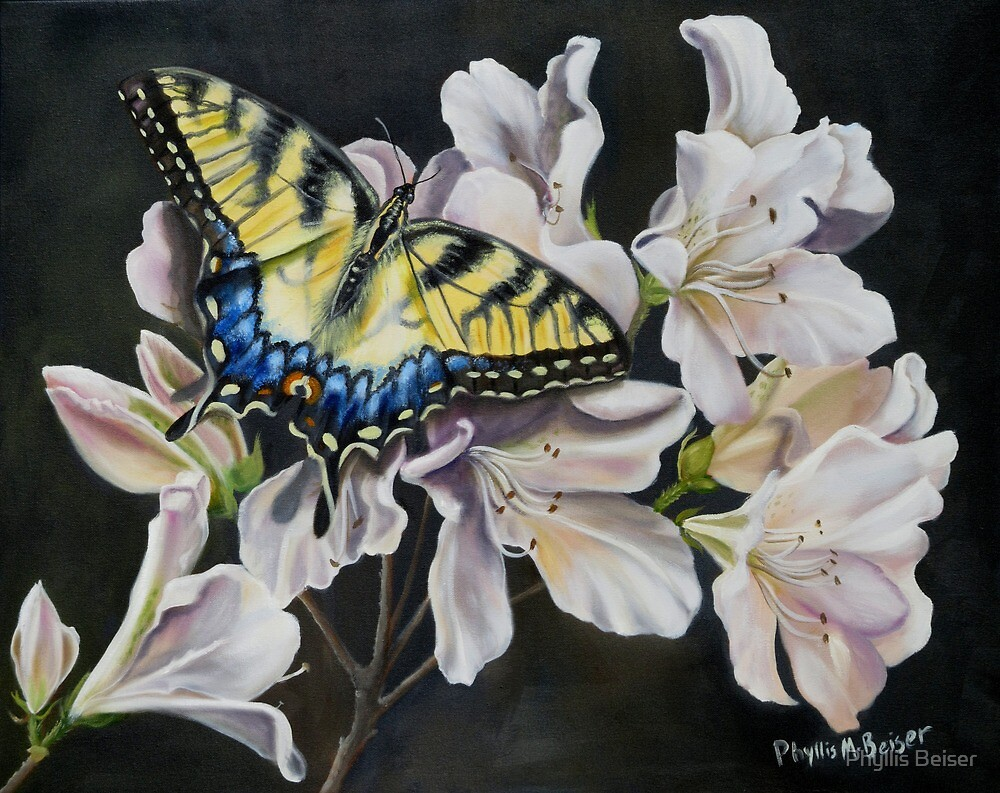 Sunset On A Swallowtail by Phyllis Beiser