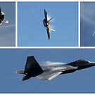 F22 Raptor Collage by brummieboy